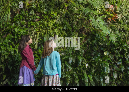 urban lifestyle Two children holding hands and looking up at a wall covered with growing foliage of a large range - Stock Photo