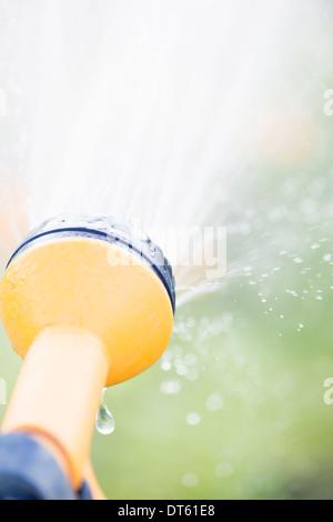 Watering garden plants with yellow sprinkler - Stock Photo