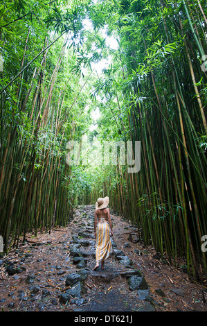 Young woman walking in bamboo grove, Hana, Maui, Hawaii - Stock Photo