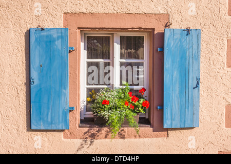 flower decked window with wooden blue shutters, schiltach, black forest, baden-wuerttemberg, germany - Stock Photo