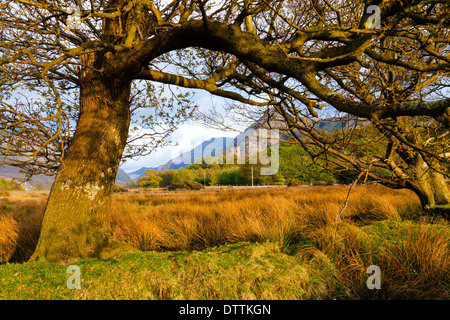 Dolbadarn Castle and Llanberis Pass Snowdonia Gwynedd Wales UK - Stock Photo