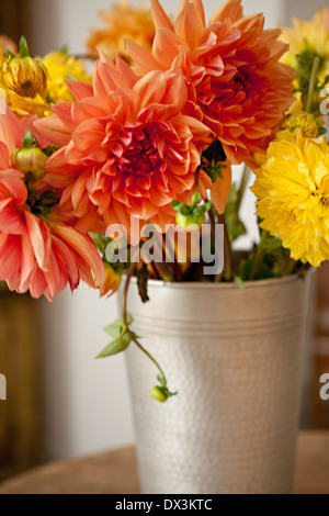 Orange and yellow dahlia bouquet in silver bucket - Stockfoto