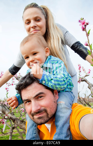 Family with toddler boy walking among blooming cherry trees , Austria - Stockfoto