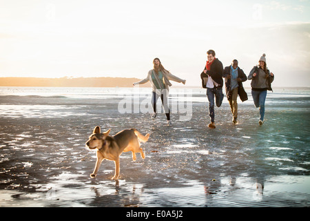 Adult friends racing with pet dog on the beach - Stock Photo