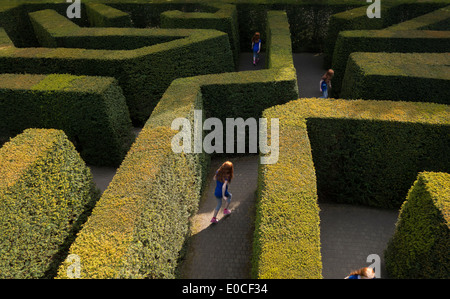 Young girl 11-12 years tween lost in a labyrinth hedge maze by herself playing running looking for the way out - Stock Photo