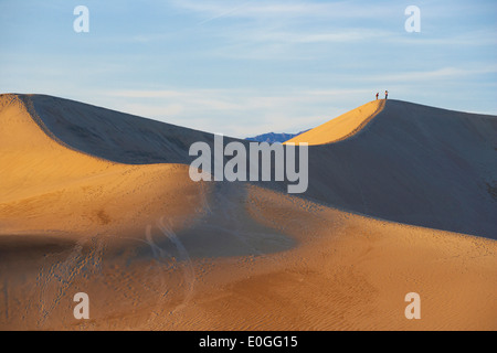 View of Mesquite Flat Sand Dunes in the evening light, Death Valley National Park, California, USA, America - Stockfoto