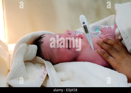 newborn baby a few minutes old in a hospital incubator in malang east java indonesia - Stock Photo