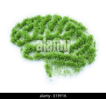 Grass patch shaped like a human brain - Stock Photo