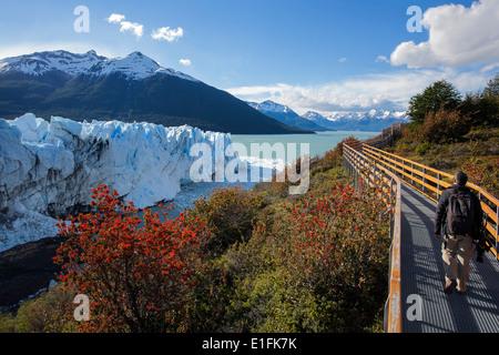 Man walking on the boardwalk.Perito Moreno glacier.Patagonia.Argentina - Stockfoto