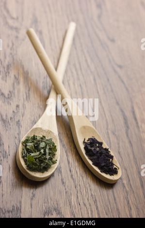 spices in wooden spoons on wooden table - Stock Photo