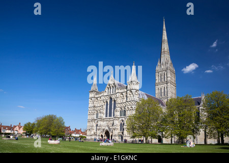 Early English Gothic style Salisbury Cathedral with the talest spire in the country. Wiltshire England UK Europe - Stock Photo