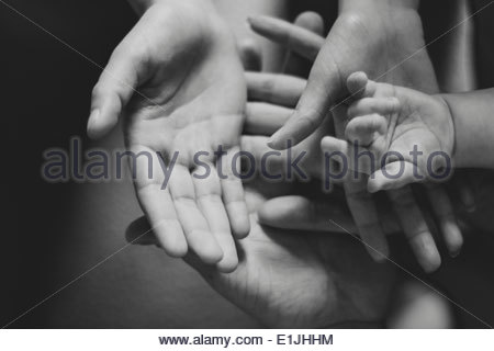 Black and white image of parents and female toddlers hands - Stock Photo