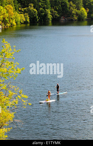 A man and woman and their child enjoy stand up paddle boarding on Thetis Lake in Thetis Lake Regional Park in Victoria, - Stock Photo