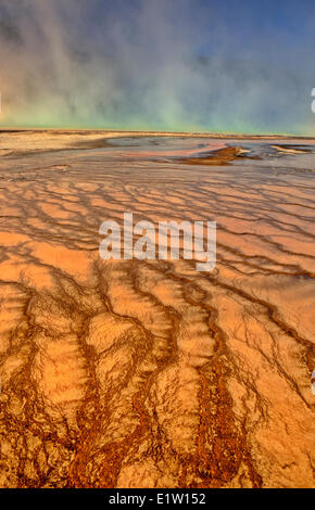 Thermophilic Algae in Grand Prismatic Spring, Midway Geyser Basin,Yellowstone National Park, Wyoming, USA - Stock Photo