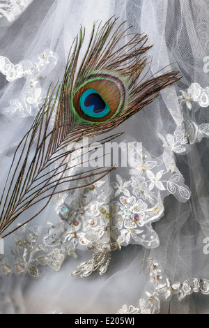 a peacock feather on a bridal veil - Stock Photo