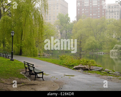 Central Park on a misty day with an empty park bench in the foreground - Stock Photo