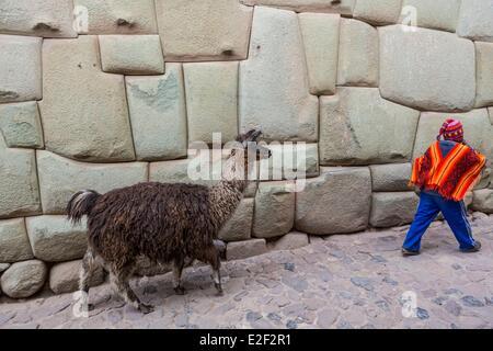 Peru, Cuzco, young boy with his llama along a Inca stone wall - Stock Photo