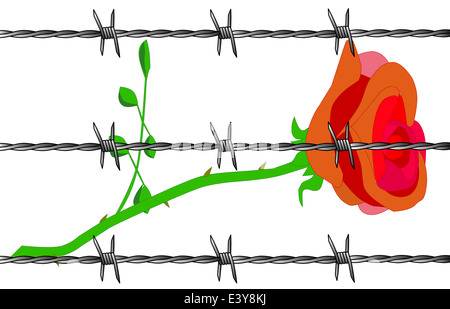 A cartoon rose set on a white background. - Stock Photo