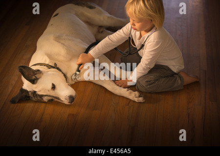 Three year old boy monitoring dog with stethoscope at home - Stock Photo