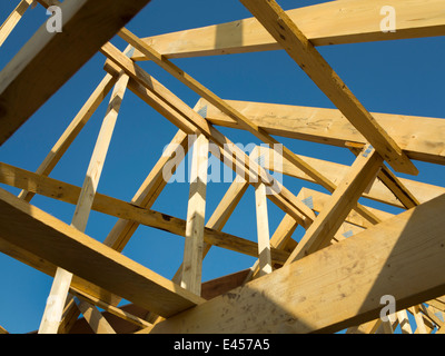 Self building house constructing roof lifting first for Manufactured roof trusses