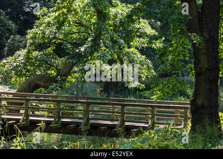Wooden bridge over a river on a sunny day - Stock Photo