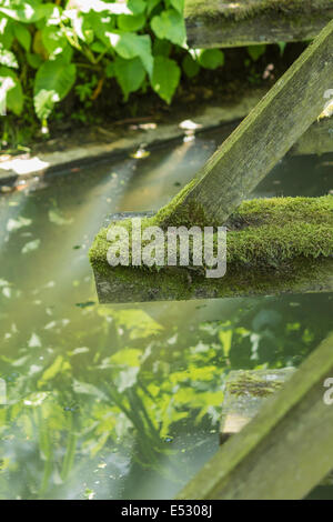 Moss growing on a wooden bridge over a stream - Stock Photo