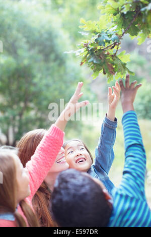 Teacher and students reaching for leaves on tree - Stockfoto