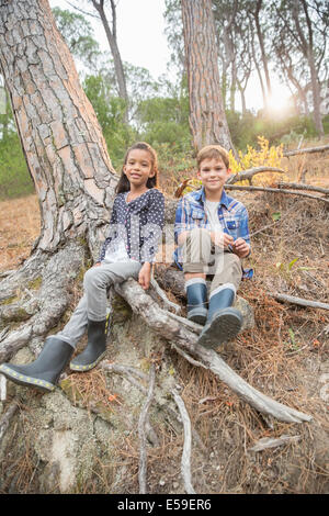 Children sitting on tree roots in forest - Stockfoto