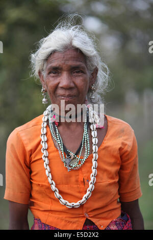 Portrait of a tribal woman wearing traditional jewellery, Baiga tribe, Chattisgadh, India - Stock Photo