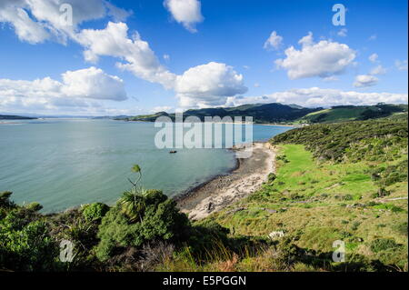 View of the Arai-Te-Uru Recreation Reserve, south end of Hokianga harbour, Northland, North Island, New Zealand, - Stock Photo