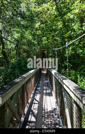 Heavy Timber Pedestrian Suspension Foot Bridge And Steps Across Stock Photo Royalty Free Image