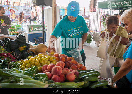 Teenager packs produce for customers at the Youthmarket during the re-opening of La Marqueta in  East Harlem - Stock Photo