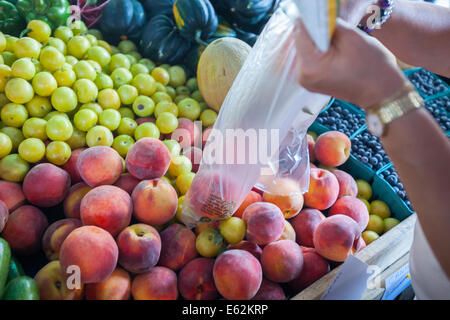 Customer picks produce at the Youthmarket stand during the re-opening of La Marqueta in the East Harlem neighborhood - Stock Photo