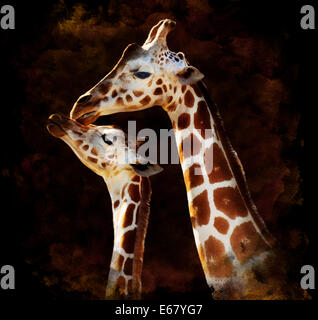 Watercolor Digital Painting Of  Mother And Baby Giraffes On Dark Background - Stock Photo
