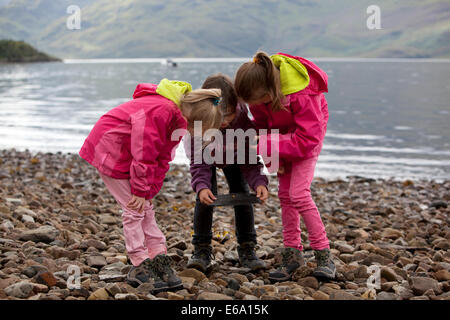 Children exploring a coastal pebble beach in Scotland. - Stock Photo