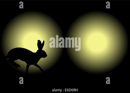 Vector illustration of a rabbit caught in car headlights at night - Stock Photo
