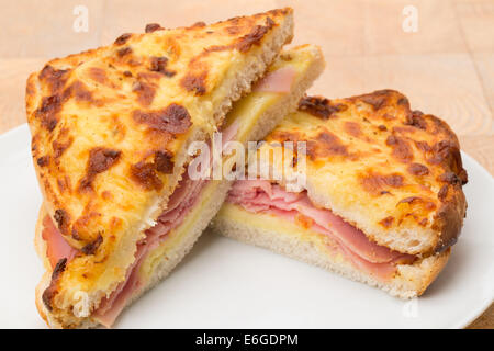 A toasted cheese and ham sandwich or panini - studio shot - Stockfoto