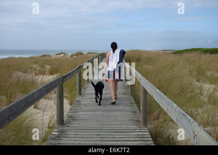 Rear view of a young woman walking a black labrador retriever dog on the leash on a boardwalk over the dunes at - Stock Photo
