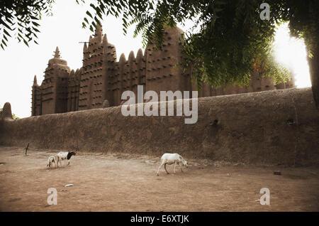 Great Mosque, Djenne, Mopti region, Mali - Stock Photo