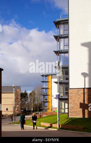 Birks Hall University of Exeter Exeter. Willmore Iles Architects have completed a large development of student accommodation - Stock Photo