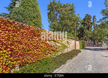 Cobblestone street along brick wall covered with colorful ivy in town of Guarene in Piedmont, Northern Italy. - Stock Photo