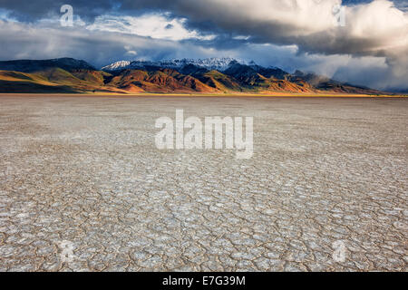 First light on the Alvord Desert Playa as a spring snow storm passes over SE Oregon's Steens Mountain in remote - Stock Photo