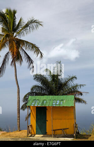 Small yellow hut with green tin roof, coconut trees, Tobago, Trinidad and Tobago - Stock Photo