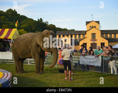 Old Bethpage, New York, USA. 28th Sep, 2014. Families look and learn about Minnie the 8,000 pound African elephant - Stock Photo