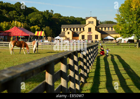 Old Bethpage, New York, USA. 28th September 2014. Palomino horses graze on grass inside a wood slat fence, with - Stock Photo