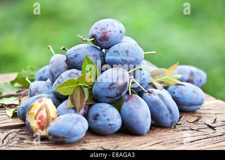 Plums on an old wooden table in the garden. - Stock Photo