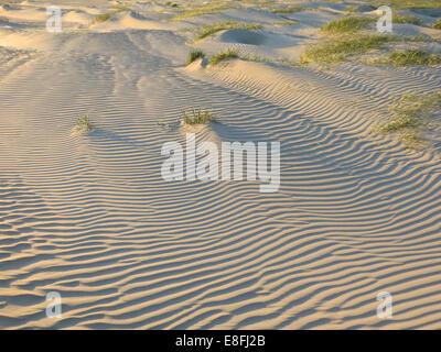 Ripples in sand - Stock Photo