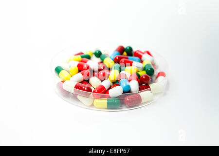 Petri dish full of pills - Stock Photo