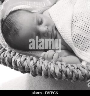 Baby (0-1months) sleeping in basket - Stock Photo