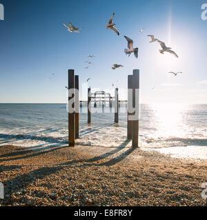 United Kingdom, Brighton West Pier - Stock Photo